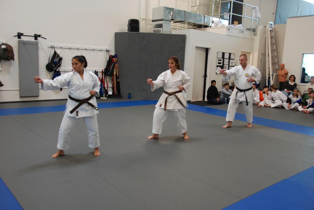 Hiyaa Martial Art Podcast Episode 4 Karate Black Belts