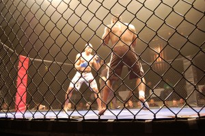 Hiyaa Martial Arts Podcast Episode 12 MMA