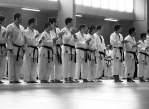 Hiyaa Martial Arts Podcast Episode 25 Mailbag