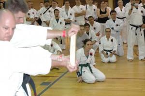 Hiyaa Martial Art Podcast Episode 43 Board Breaking Karate
