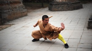 Shaolin Monk in Low Kung Fu stance
